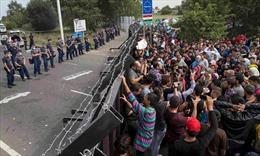 Dòng người di cư bắt đầu lan đến Croatia