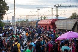 Người nhập cư mơ đến miền đất hứa