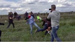 """Ông bố tị nạn bị phóng viên """"đốn ngã"""" được mời làm HLV"""