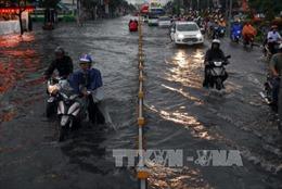 Người dân Sài Gòn trong cảnh ngập lụt