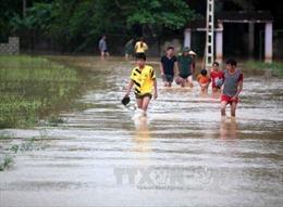 Mưa lũ gây thiệt hại nặng ở Hòa Bình, Phú Thọ