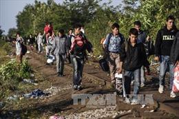 Đức giảm chi tiêu để bù đắp chi phí cho người nhập cư