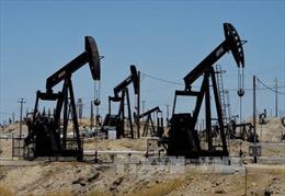 """1.500 tỷ USD rót cho ngành năng lượng thành """"công cốc""""?"""