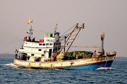 Bắt giữ ba tàu cá Thái Lan đánh bắt trái phép tại Cà Mau