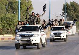 Mỹ điều tra lý do IS sở hữu nhiều xe Toyota