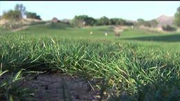Mỹ bắt giữ nghi can đánh bom sân golf ở California