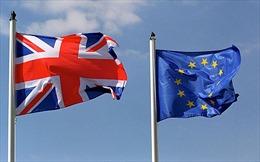 Phát động chiến dịch ủng hộ Anh ở lại EU