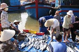 Gắn kết kinh tế biển với bảo vệ chủ quyền quốc gia