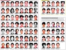 """Chiến dịch """"Săn cáo 2015"""" của Trung Quốc bắt 556 nghi phạm"""