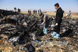 Pháp y khôi phục 150 thi thể nạn nhân máy bay Nga rơi