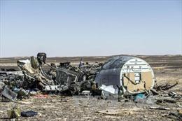 Khả năng có bom trên máy bay Nga rơi ở Ai Cập