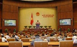 Xem xét phê chuẩn Nghị định thư sửa đổi Hiệp định thành lập WTO