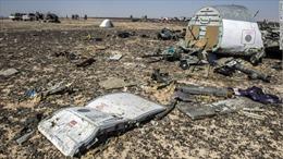 Nhân viên sân bay có thể đã cài bom máy bay Nga