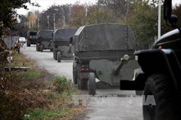 """""""Nhóm Normandy"""" khen tiến bộ của lệnh ngừng bắn ở Đông Ukraine"""