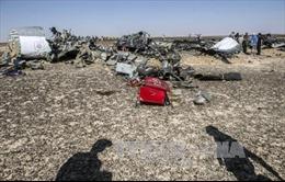 """""""Tiếng ồn"""" ở giây cuối trên máy bay Nga rơi ở Ai Cập"""