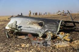 Nga xem xét khả năng máy bay rơi ở Ai Cập bị khủng bố