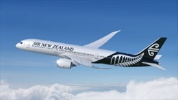 New Zealand xem xét mở đường bay thẳng tới Việt Nam