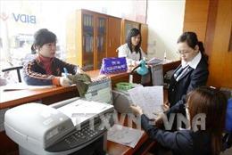 Phong tỏa tài khoản doanh nghiệp cố tình nợ thuế