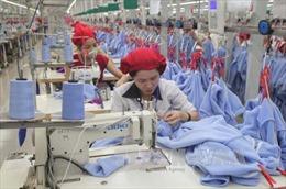 Dệt may Malaysia có thể thua Việt Nam nếu không vào TPP