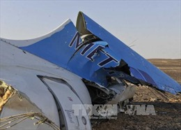 Nga tái khẳng định máy bay rơi ở Ai Cập là do khủng bố