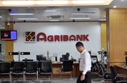Xét xử đại án tham nhũng nghìn tỷ tại Agribank Nam Hà Nội