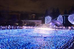 Kỳ ảo lễ hội ánh sáng Tokyo 2015