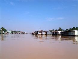 Cuộc sống làng cá bè Tân Mai - Biên Hòa
