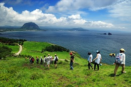"""Tìm thấy thêm 9 người Việt """"mất tích"""" ở đảo Jeju"""