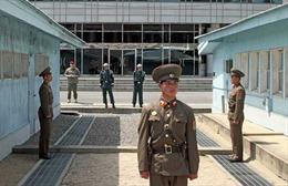 Triều Tiên rải 1 triệu truyền đơn qua biên giới