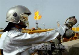 OPEC: Thị trường dầu mỏ sẽ tái cân bằng trong năm 2016