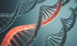 Yếu tố di truyền giúp nhận biết sớm ung thư buồng trứng