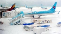 Bão tuyết khiến 86.000 người mắc kẹt trên đảo Jeju, Hàn Quốc