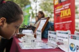 Công ty Ấn Độ đang phát triển vaccine ngừa Zika