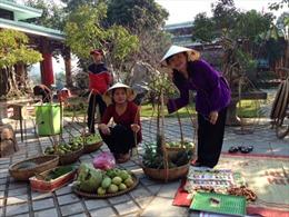 """Quảng Bình: Hội chợ """"Xuân về mang thương nhớ"""" thu hút du khách"""