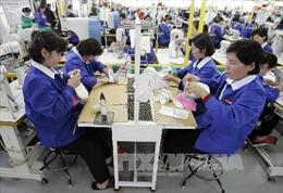 Mỹ áp đặt trừng phạt công ty Triều Tiên liên quan xuất khẩu lao động