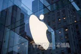 Mỹ: Nhiều nạn nhân trong vụ tấn công ở San Bernardino khởi kiện Apple