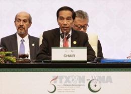 OIC ra Tuyên bố Jakarta ủng hộ Nhà nước Palestine độc lập