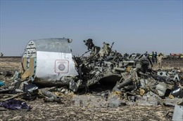 Nga gửi Ai Cập báo cáo điều tra vụ máy bay rơi tại Sinai