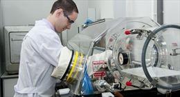 Nga nghiên cứu thuốc chống ung thư dựa trên bọt biển
