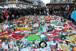 Brussels không chết, Brussels không gục ngã