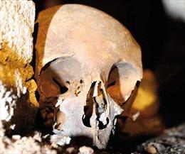 Có hay không vụ trộm sọ nhà soạn kịch Shakespeare?