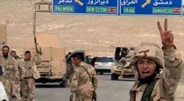 Palmyra trong cuộc giằng co từ tay IS