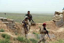 Người Iraq lũ lượt sơ tán khỏi Mosul