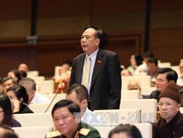 Phát huy hơn nữa vai trò của các ủy ban Quốc hội