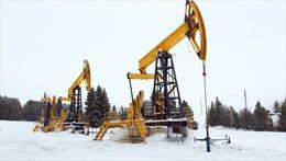 Giá dầu thế giới tăng hơn 5%