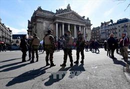 Bỉ bắt thêm 3 đối tượng nghi liên quan vụ khủng bố Paris