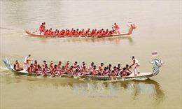 Sôi nổi Hội thi bơi trải Bạch Hạc truyền thống