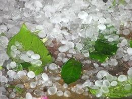 Bắc Bộ nguy cơ tố lốc, mưa đá