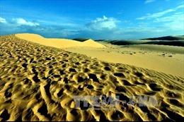 Chặn đứng nạn cát bay, cát nhảy