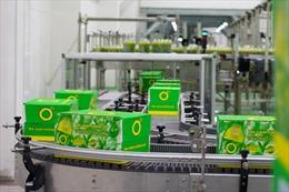 Khám phá quy trình sản xuất Trà xanh Không độ